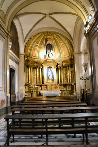 Catedral Metropolitano - side aisle altar