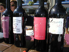 Some of the wines from our wine tasting