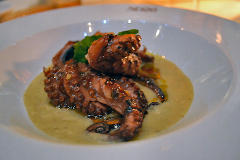 SD26 - grilled octopus