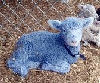 Thumbnail image for On the Lamb