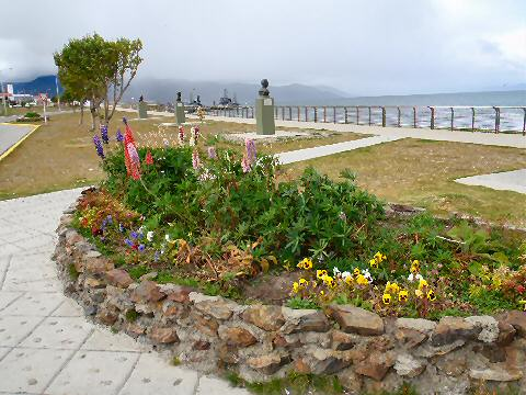 flower bed on the waterfront