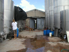 Vinedo de los Vientos - outdoor fermentation tanks